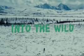 Into the Wild 2007